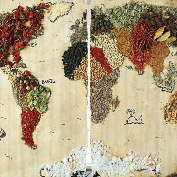 Ambesonne Other - Curtains Spices World Map Print Backdrop 13752